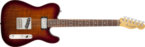 Blackwood Fender