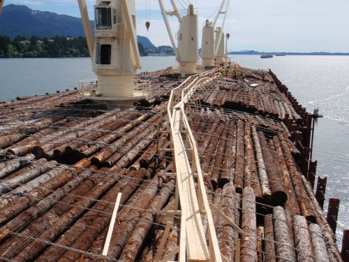 logs-on-ship-close-up.jpg